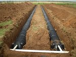 Septic Drainfield